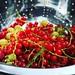 Snoep uit eigen tuin / #candy from own #garden #fruit