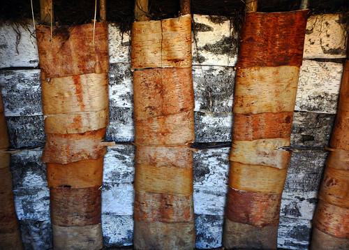 Prediction of what a Stone Age house in Sweden looked like; its inner walls lined with Birch bark in an alternating pattern of inner and outer bark.