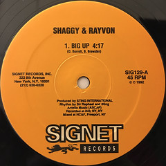 SHAGGY & RAYVON:BIG UP(LABEL SIDE-A)