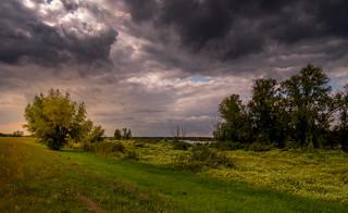 Am Ufer der Oder 24