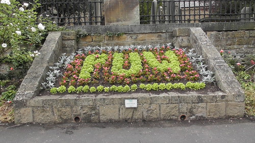 Church Green Whickham flower beds June 18 (3)