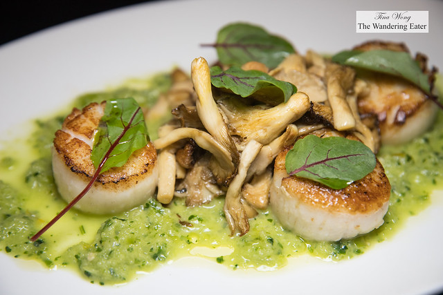 Grilled diver sea scallops, applewood smoked oyster mushrooms, cucumber relish, sorrel