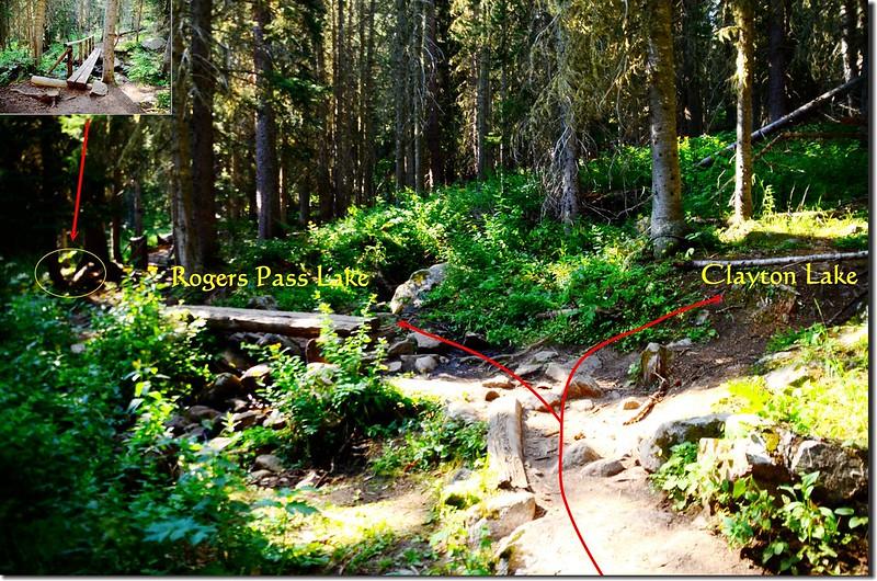 Clayton Lake & Rogers Pass Lake fork