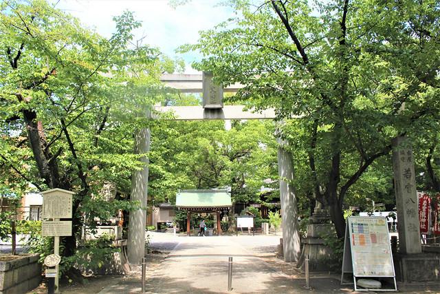 wakamiyahachiman002