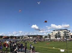 Tangen-Kristiansand-Dragefestival
