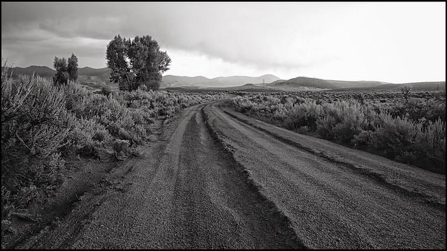 In a rut? Wood Gulch. Gunnison Valley, Colorado