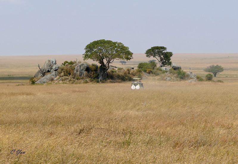 Kenya - Tanzania (Lodge 2)