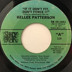 KELLEE PATTERSON:IF IT DON'T FIT, DONT FORCE IT(LABEL SIDE-A)