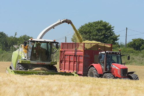 Claas Jaguar 870 SPFH filling a Broughan Engineering Mega HiSpeed Trailer drawn by a Massey Ferguson 6495 Tractor