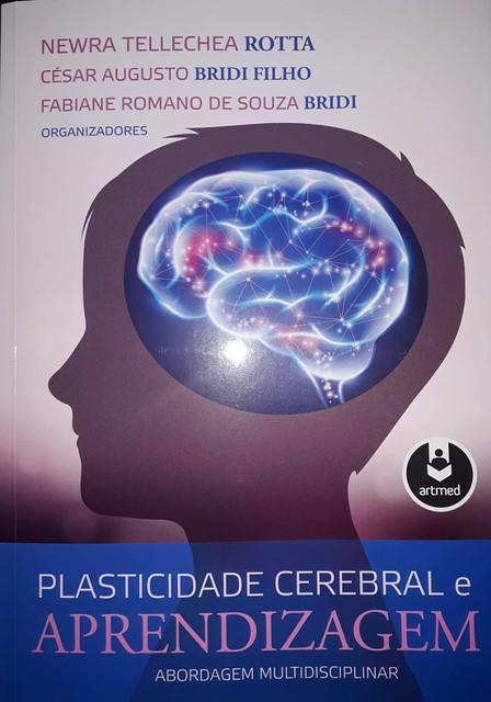 """Lançamento do livro """"Plasticidade Cerebral e Aprendizagem: Abordagem Multidisciplinar"""""""