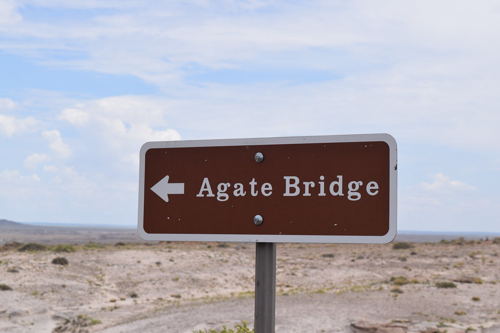 Petrified Forest National Park, Agate Bridge