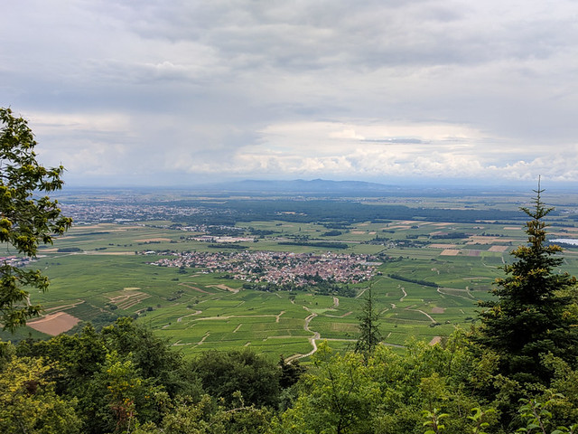 looking down on Eguisheim