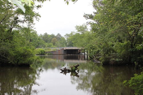 Concord Pond Dam