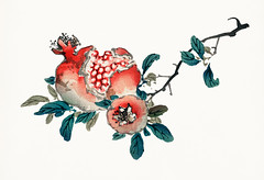 Pomegranate by Kōno Bairei (1844-1895). Digitally enhanced from our own original 1913 edition of Barei Gakan.
