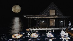 Moon Tide House