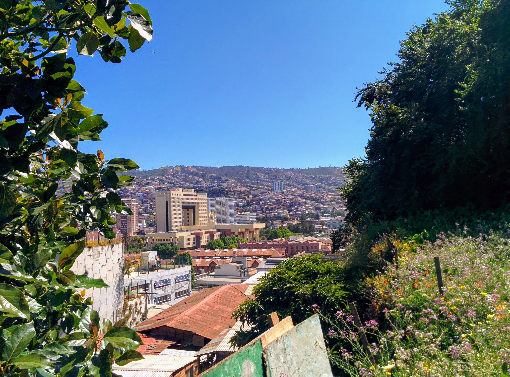 A view over Valparaiso from a hillside