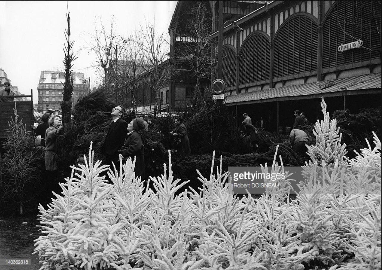 1967. Торговля Рождественскими ёлками в Ле-Аль