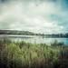 Westport Lake Panorama