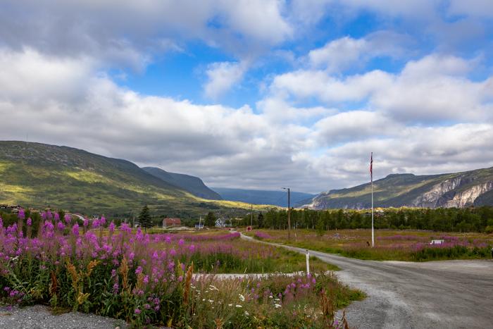 Moottoripyörä Norja maisema Keski-Norja roadtrip harley davidson chopper sportster softail moottoripyörämatkailu vuoristo vuori maisemakuvaaja matkakuvaaja kylä