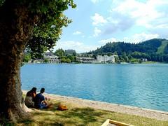 un loc de vis-lacul bled/a dream place-lake bled
