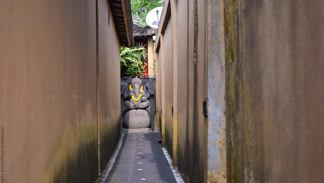 Bali-Ubud-(62)