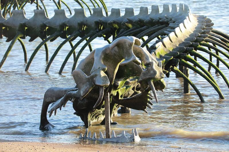 Détail du serpent d'océan de ST NAZAIRE