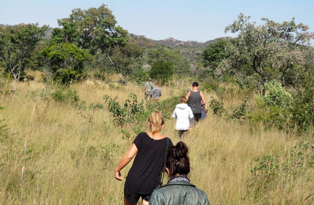 bush-hike-zimbabwe