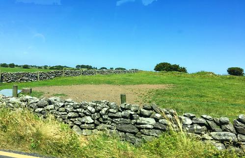 Typische von Steinmauern geschütze Weiden