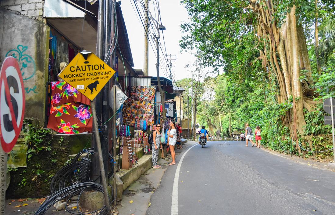Bali-Ubud-(1)