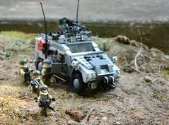 Lynx On Patrol