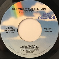 NEW EDITION:CAN YOU STAND THE RAIN(LABEL SIDE-B)