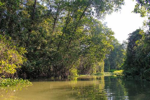 Río Arriba (74)