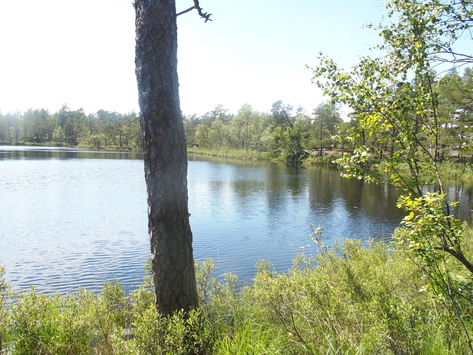 SÖ E5 Långsjön