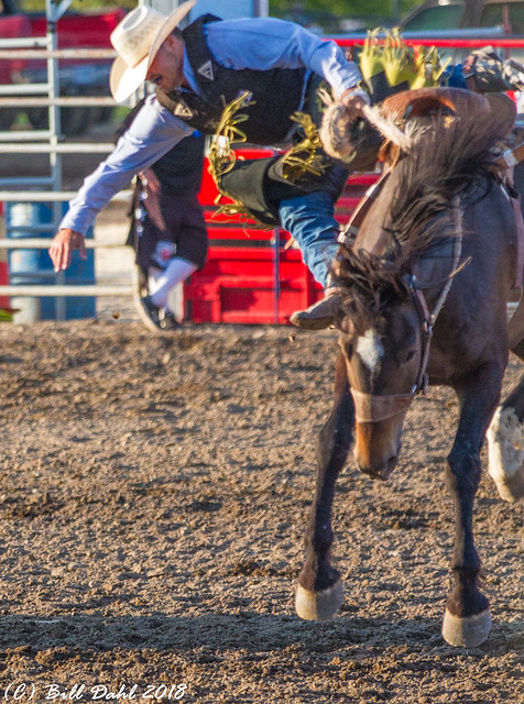 Deschutes County Fair & Rodeo- 2018