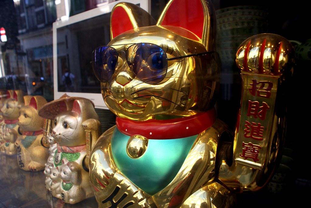 Le chat qui pèse à Chinatown à Amsterdam.