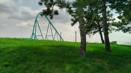 Some trees, a hill, and a roller coaster