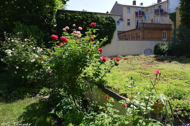 Offene Gärten Halle Saalekreis