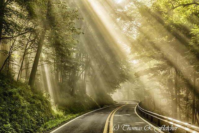 Country Road Rays of Light