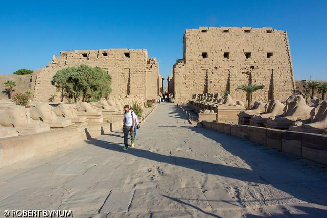 Karnak Temple, Nikon 1 AW1, 1 NIKKOR VR 6.7-13mm f/3.5-5.6
