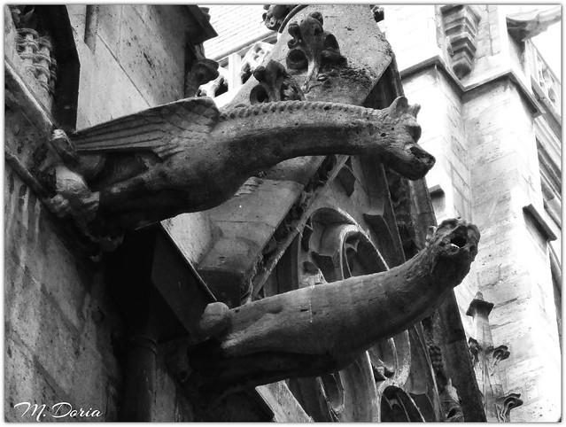 Gargoyles - Notre Dame, Canon IXUS 160