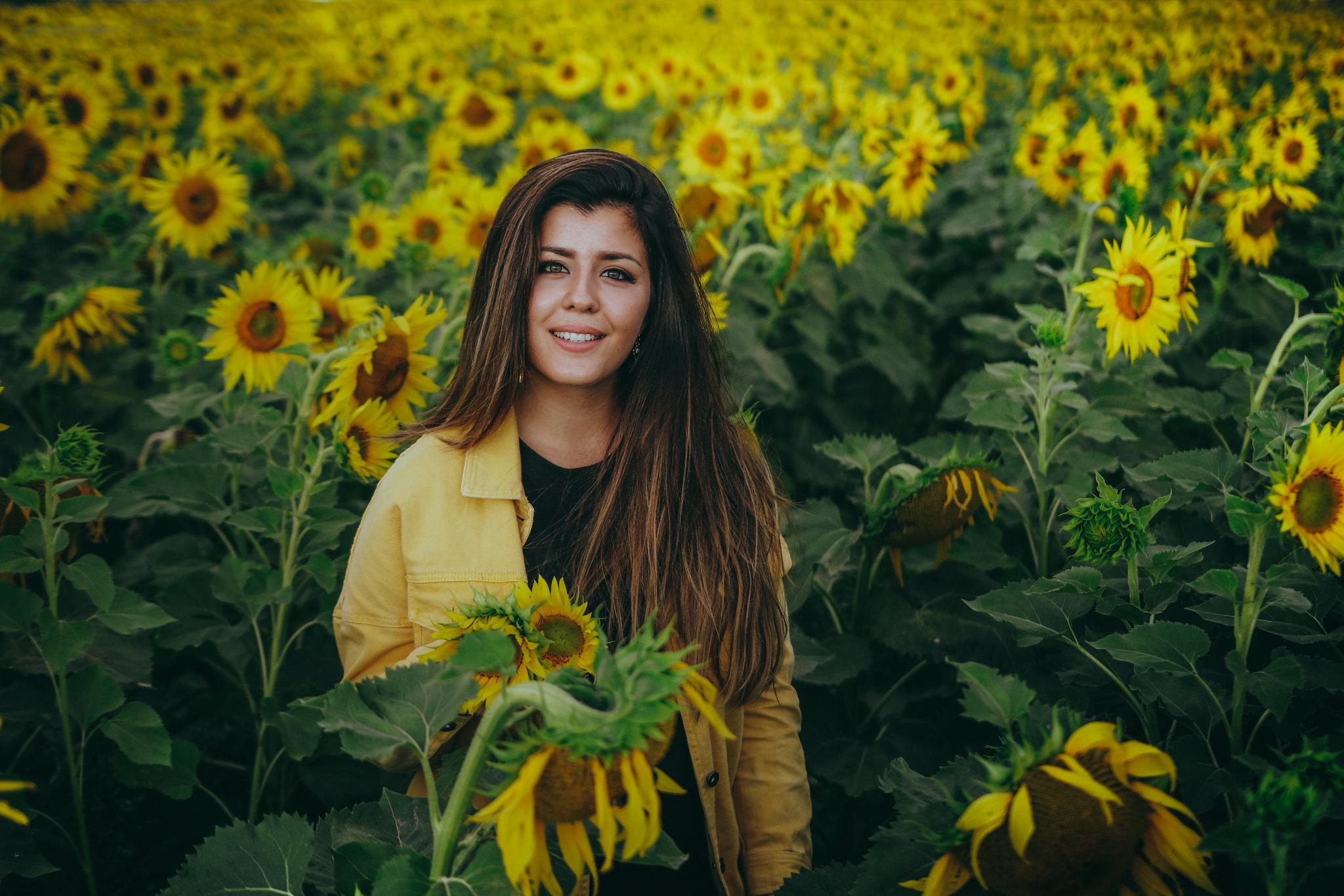 auringonkukkia-28