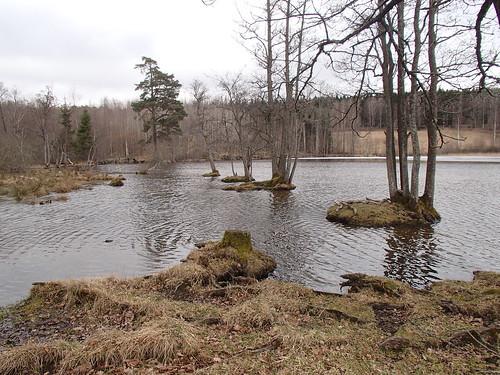 SÖ E19 Ånhammar sjön