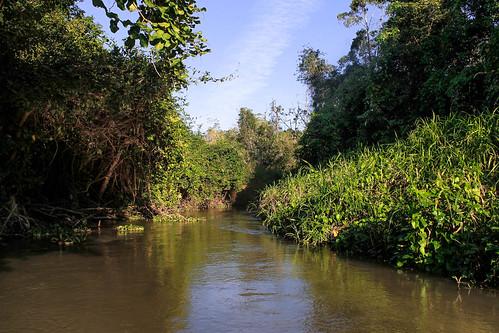 Río Arriba (28)