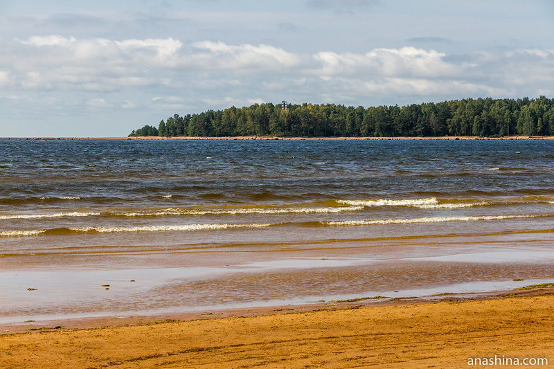 Бухта Жёлтая, Балтийское море