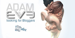 ADAM and EvE looking for Bloggers BLOGOTEX -2018