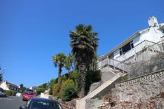 Garden Palms, Torquay