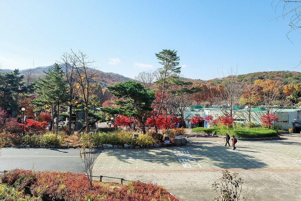 elder_walk_seoul_grand_park