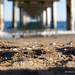 #puente #bridge #arena #mar #2017 #marbella #málaga #andalucía #españa #spain #arquitectura #architecture #paisaje #landscape #photoshoot #shoot #shooting #photography #photographer #picoftheday #MiFotoDR #CanonEspaña #canonglobal #CanonForum #canonistas by Manuela Aguadero PHOTOGRAPHY