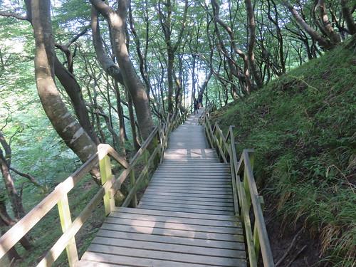 496 Stufen zum Strand