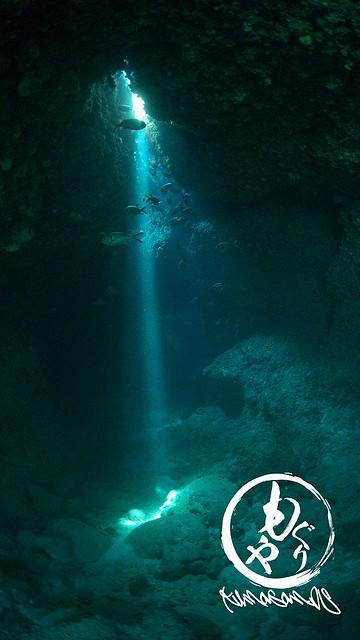水中でみる光線は美しい